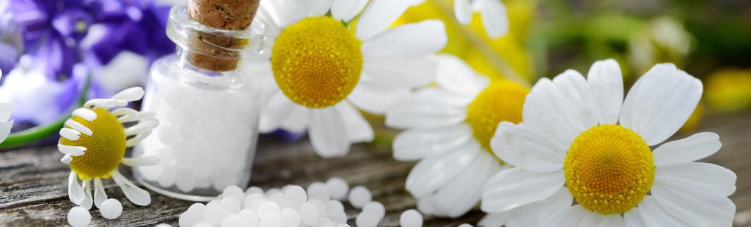 Fallbeispiele der Homöopathie